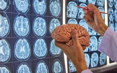 5 sposobów neuronaukowców na budowanie odporności psychicznej