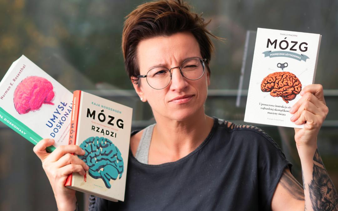 Jak działa mózg wg koncepcji MacLeana ?